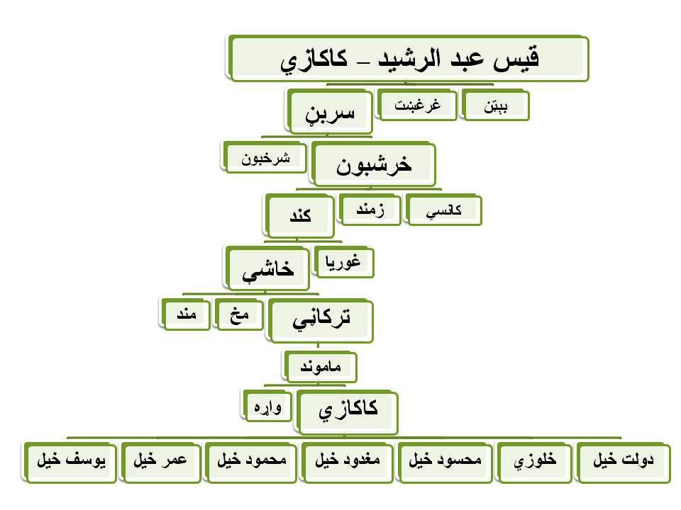 Family Tree in Pashto - Kakazai کاکازي