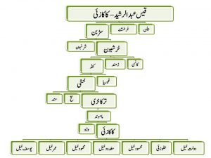 Kakazai Pashtun Family Tree in Urdu